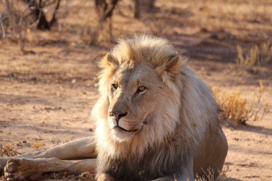 Erindi Game Reserve, Namibia: Erindi Private Game Reserve / Old Traders Lodge