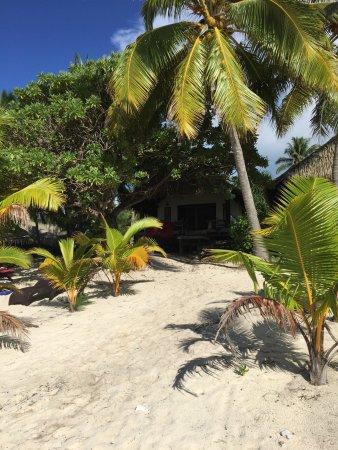 Tamanu Beach: photo1.jpg