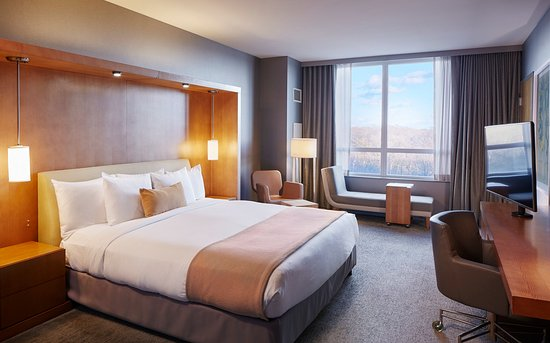 Rosemont, IL: King Room