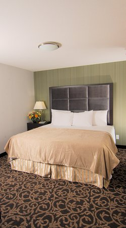 Redwater, Canada : Guest Room