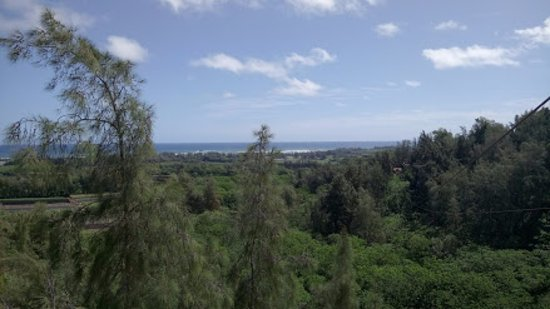 Kahuku, HI: View from one of the platforms