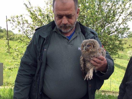 Sulzano, Włochy: Un angelo travestito da guardia forestale ha appena salvato il piccolo allocco...