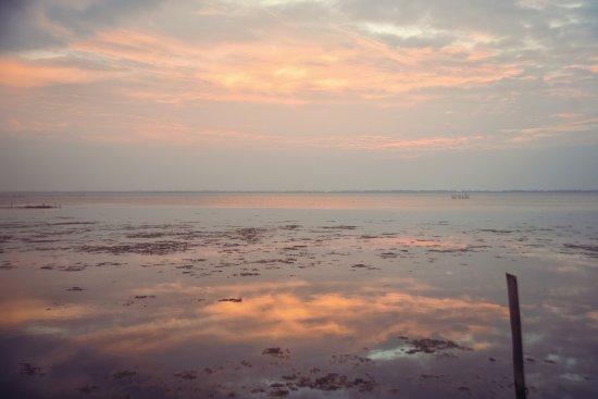 Pictures of Hush Lagoon 30 - Negombo Photos