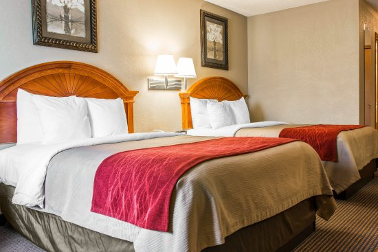 Quality Inn & Suites Airport: Guest Room