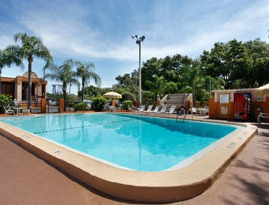 Travelodge Tampa/ West Of Busch Gardens: Pool