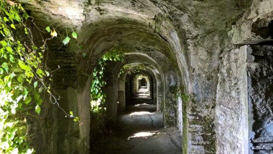 Sorde-l'Abbaye, Frankreich: Unique en France - Cryptoportique