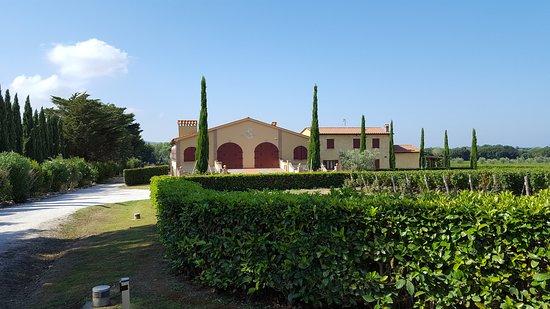 Bolgheri, Italy: tenuta