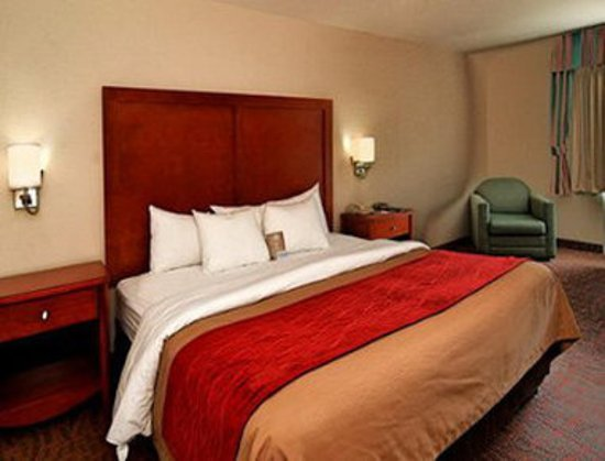 Days Inn Williamsburg Historic Area: Guest Room with One Bed