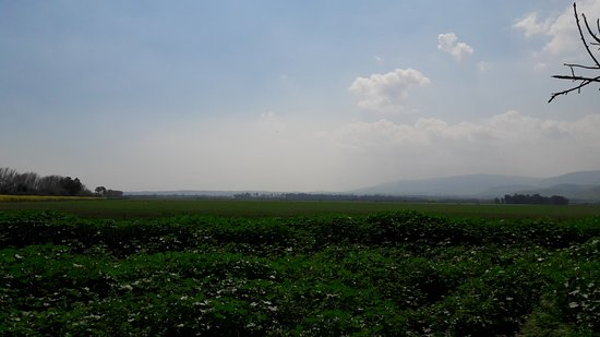 Galilee, Israel: אגמון החולה