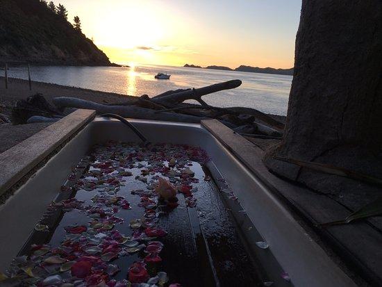 Ngaio Bay, นิวซีแลนด์: Heated bath on the beach