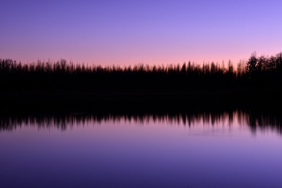 Treeline Sunset on our lake in New Port Richey - Trinity
