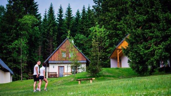 Destne, Czech Republic: horské chaty