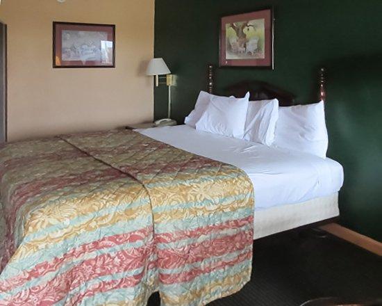 บราวน์สวิลล์, เทนเนสซี: Bedrooms