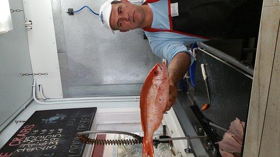 Casamar seafood market tavernier omd men om for Key largo fish market