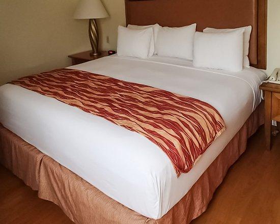 Южный район Майами, Флорида: Guest Room