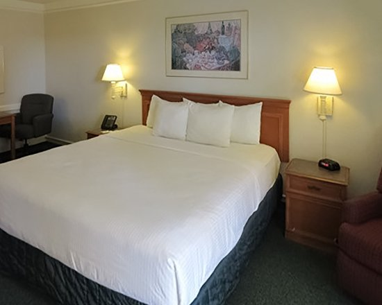 Harlingen, TX: Guest Rooms