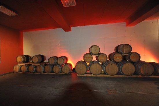 Savignano sul Panaro, Włochy: Interno della nostra barricaia, per l'affinamento dei nostri vini rossi fermi