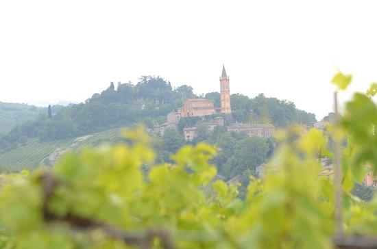 Veduta del borgo medioevale di Savignano sul Panaro dalla nostra azienda