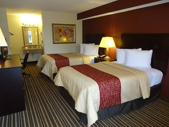 Red Roof Inn Indianapolis - Castleton: Double