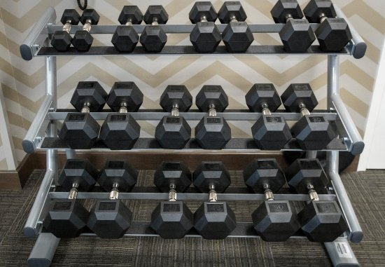Malvern, Pensilvania: Fitness Center - Free Weights