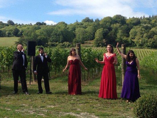 Albury, UK: Opera on the vineyard!
