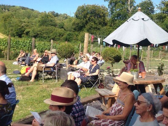 Albury, UK: Guests enjoying Opera on the vineyard