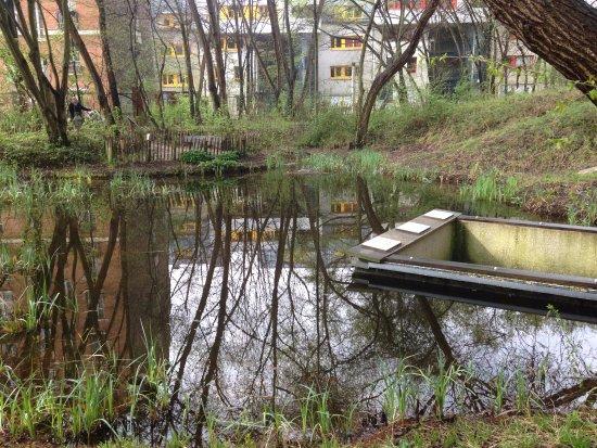 La Mare Picture Of Jardin Naturel Pierre Emmanuel Paris Tripadvisor