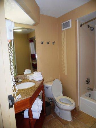 เอมส์, ไอโอวา: Guest Bath