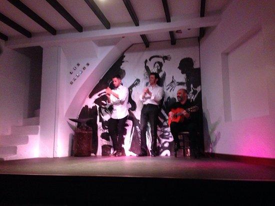 Los Gallos Tablao Flamenco : photo0.jpg