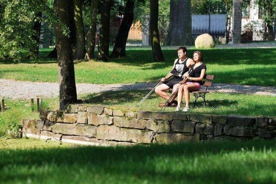Korczyna, Poland: Property area