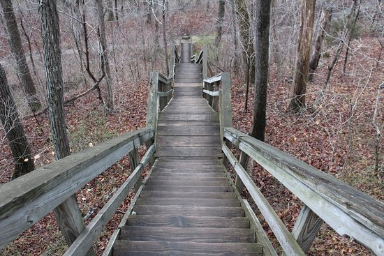 Clifty Falls State Park: Stairs leading to some of the trails.