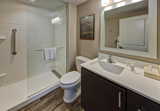 Auburn, AL: King Studio Suite - Bathroom