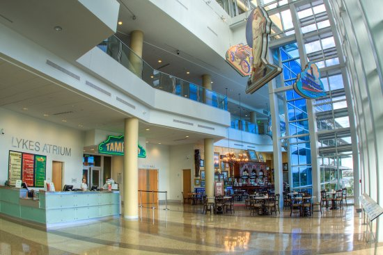 Tampa Bay History Center: The History Center's Lykes Atrium welcomes visitors with a dazzling view the Tampa Riverwalk.