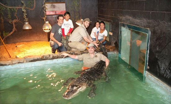 King City, แคนาดา: Attraction: Reptile Zoo