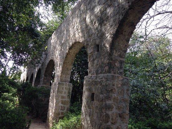 Photo of Nature Preserve Trsteno Arboretum at Potok 20, Trsteno 20235, Croatia
