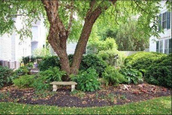 Onancock, VA: Property View