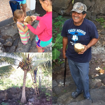 Casa Iguana Mar y Sol: Our host, Luis! Coconuts were ripe, so he cut one down for the kids to try!