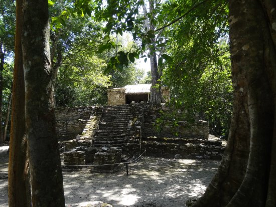 Quintana Roo, Mexico: Jungle ruins