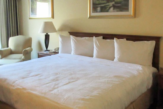 Sandersville, GA: Guest Room