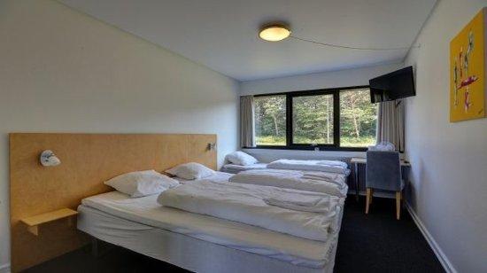 Roedby, เดนมาร์ก: Triple room