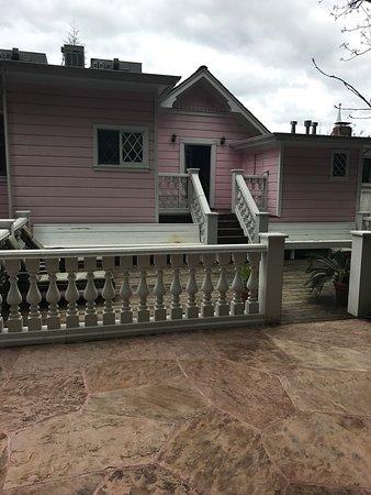 The Pink Mansion: photo2.jpg