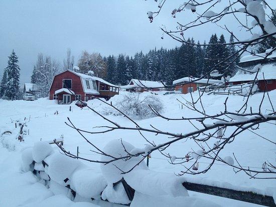 Rossland, Canada: Red Barn Lodge