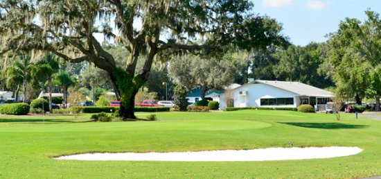 Lady Lake, FL: Golf everywhere! Tennis and Softball, too!