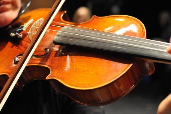 Parker Symphony Orchestra: Parker Symphony - Violin