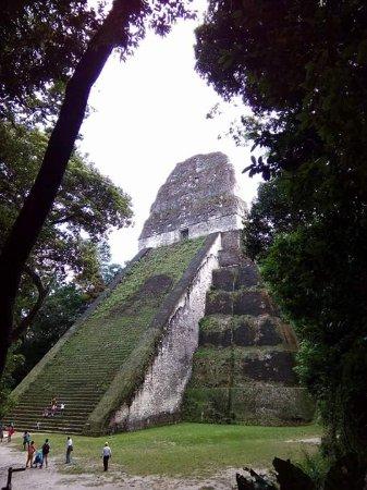 Dangriga, Belice: Live Belize