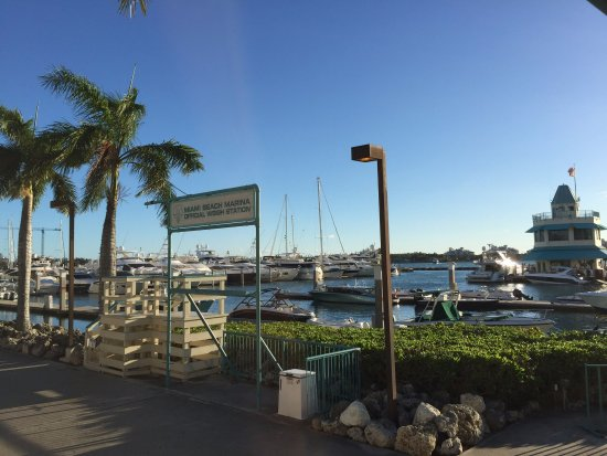 Monty's Raw Bar: Marina view from our table