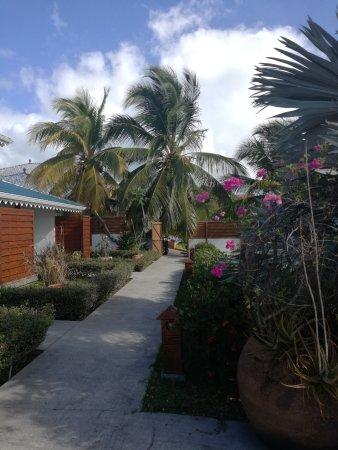 Le Vauclin, Martinik: IMG_20170314_090137_large.jpg