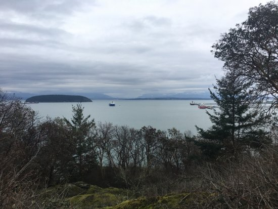 Anacortes, WA: Padilla Bay from Cap Sante Park early in the morning.