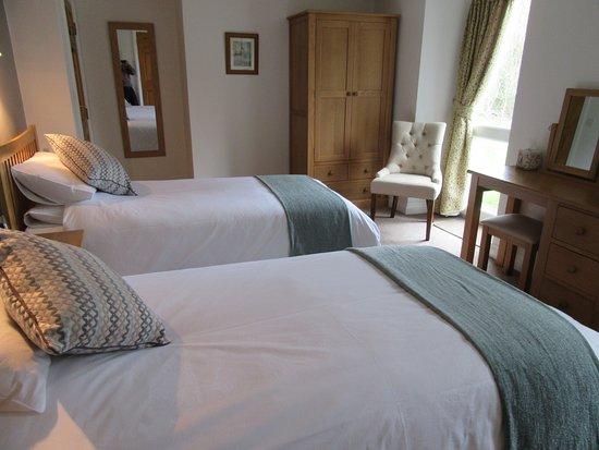 Newcastle Emlyn, UK: Twin bedroom