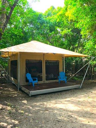 Cinnamon Bay Best Night Sleep Ever Camping